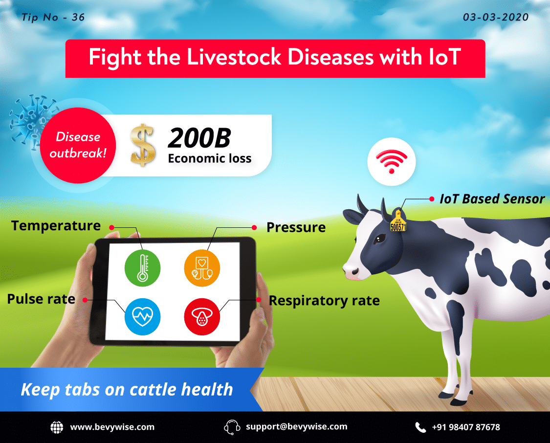 IoT Application in Cattle Monitoring