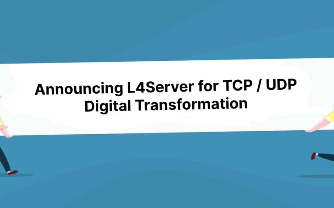 TCP and UDP server